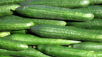 Komkommertijd, Maar Ondertussen Achter De Schermen…